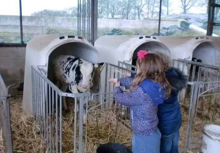 Excursie melkveebedrijf Lazeroms